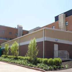 Rutgers University Cell and DNA Repository
